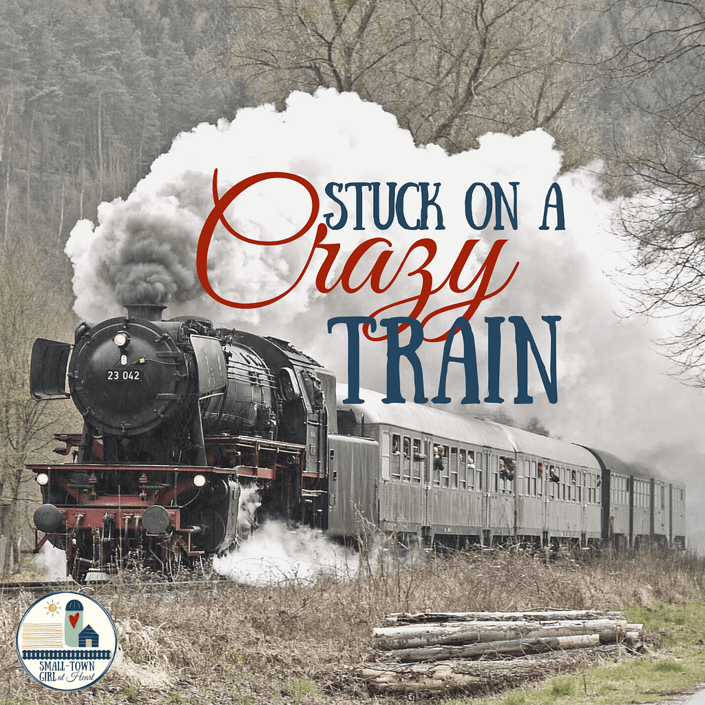 Stuck on a Crazy Train_Small-Town Girl at Heart