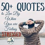 50+ Quotes to Live By When You are Feeling Stressed